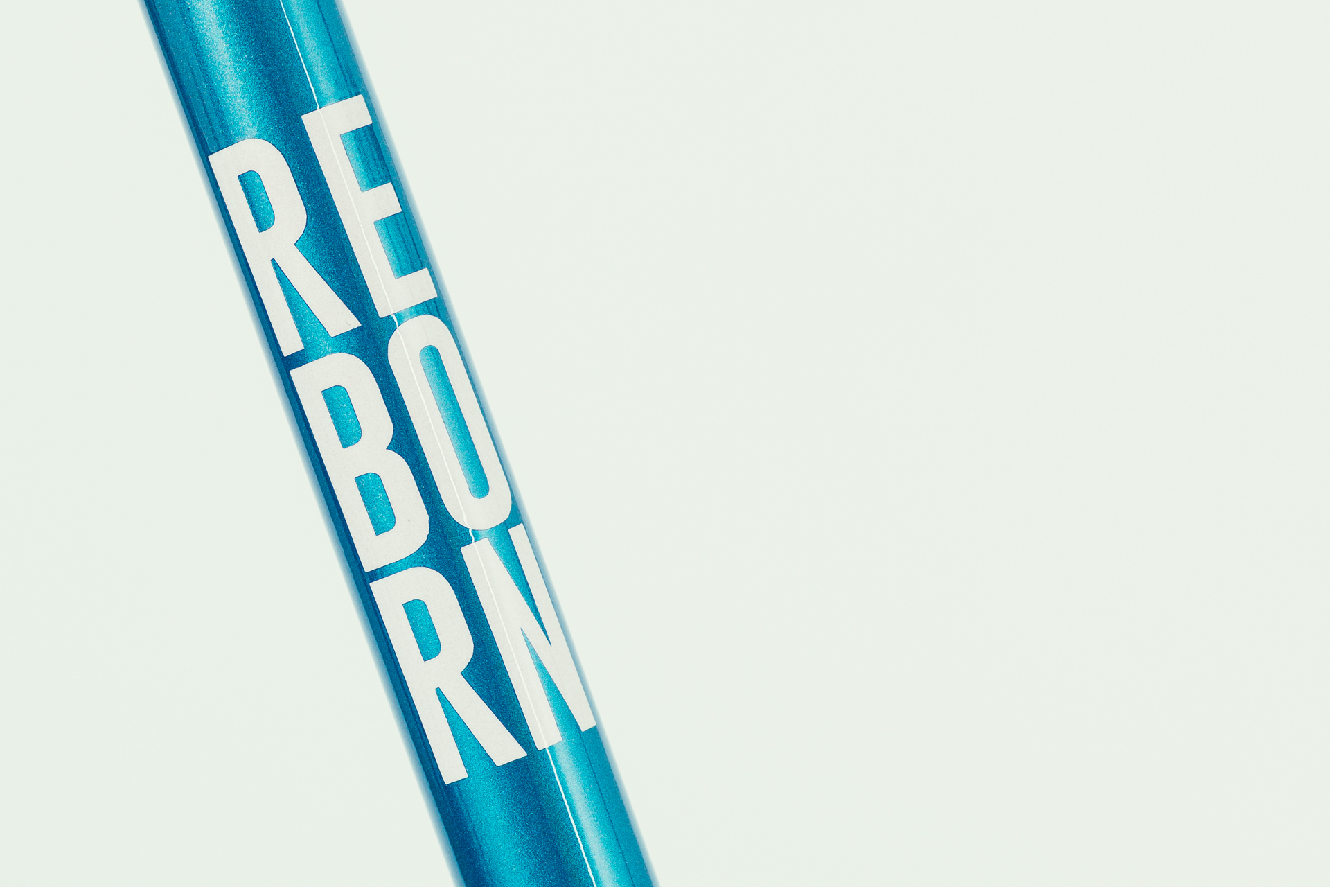 Reborn ZZ_2